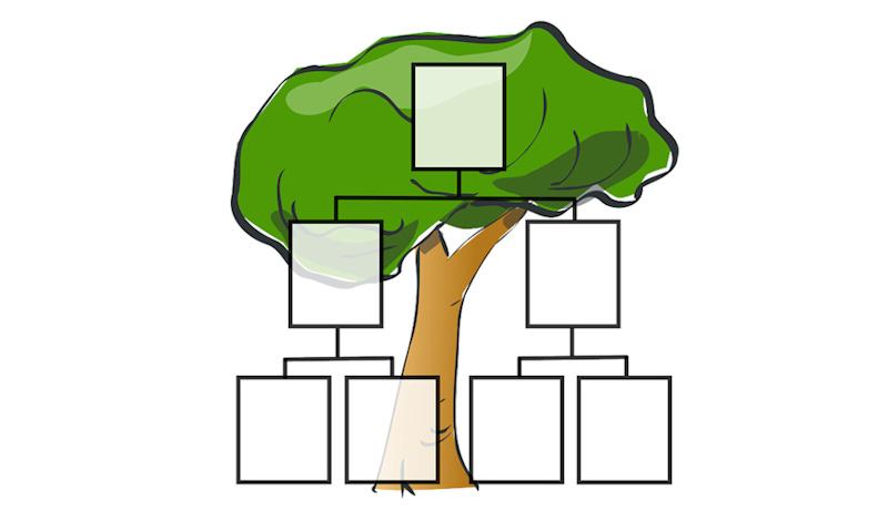 Course Image Genealogia - archiwum rodzinne